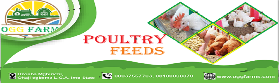 1 poultry feeds