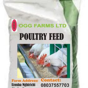poultry feeds in nigeria