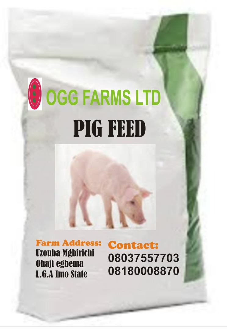 pig feeds supplier